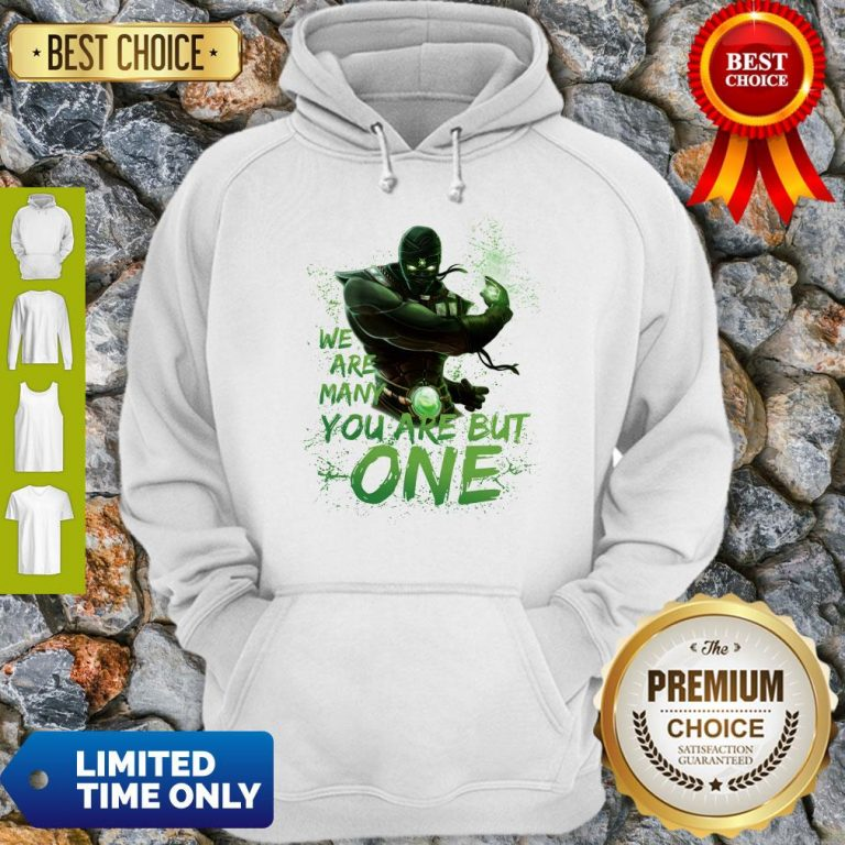Pro We Are Many You Are But One Hoodie