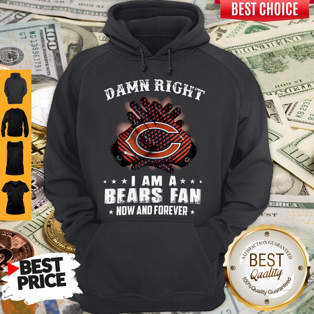 Funny Damn Right I Am A Bears Fan Now And Forever Hoodie