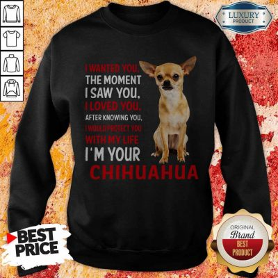 Cute I Wanted You The Moment I'm Your Chihuahua Sweatshirt