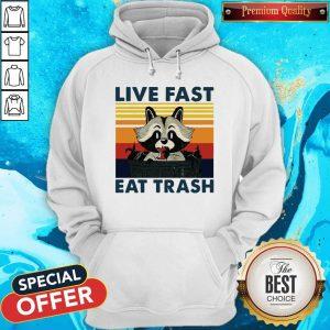 Good Raccoon Live Fast Eat Trash Vintage Hoodie