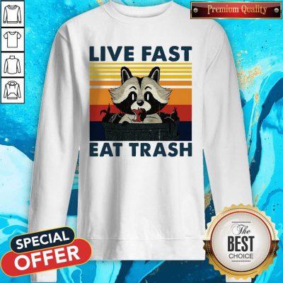 Good Raccoon Live Fast Eat Trash Vintage Sweatshirt