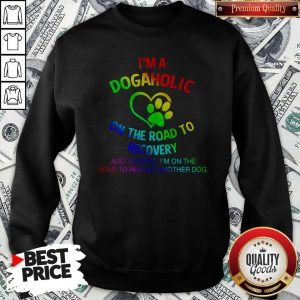 Nice LGBT I'm A Dogaholic On The Road To Recovery Sweatshirt