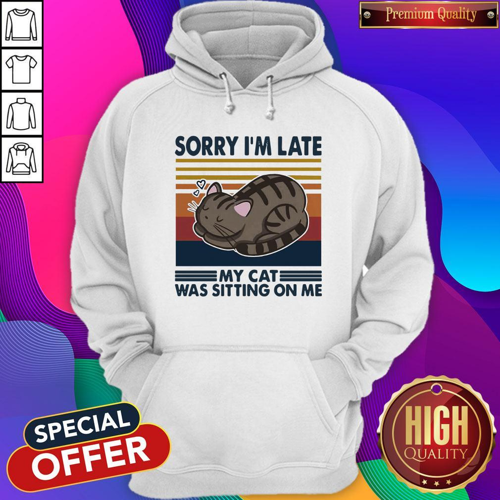 Official Sorry I'm Late My Cat Was Sitting On Me Cat Vintage Hoodie