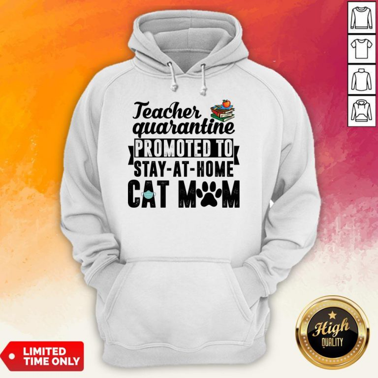 Teacher Quarantined Promoted To Stay At Home Cat Mom Hoodie
