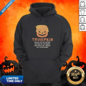 Halloween Trumpkin Orange On The Outside Hollow On The Inside And Should Be Thrown Out In November Hoodie
