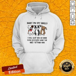 Hurt My Pit Bulls I Will Slap You So Hard Even Google Won't Be Able To Find You Hoodie
