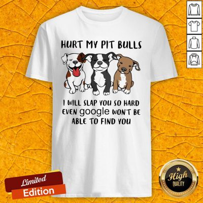 Hurt My Pit Bulls I Will Slap You So Hard Even Google Won't Be Able To Find You Shirt