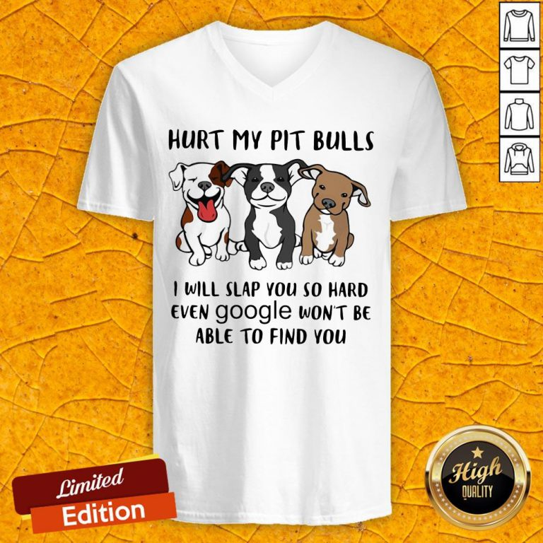 Hurt My Pit Bulls I Will Slap You So Hard Even Google Won't Be Able To Find You V-neck