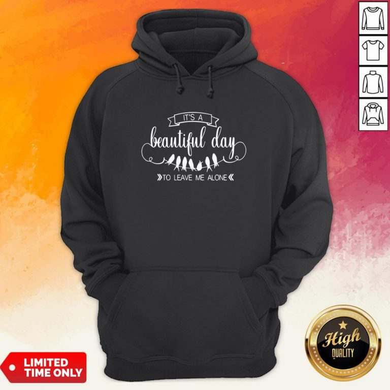 It'S A Beautiful Day To Leave Me Alone Hoodie