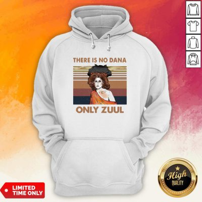There Is No Dana Only Zuul Vintage Retro Hoodie