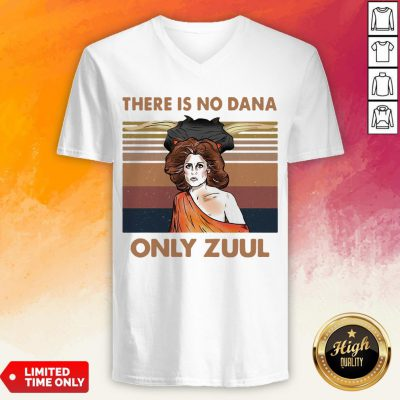 There Is No Dana Only Zuul Vintage Retro V-neck