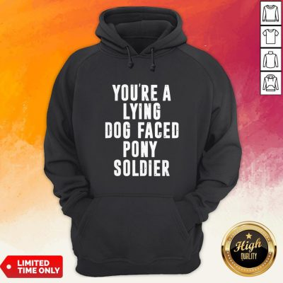You're A Lying Dog Faced Pony Soldier Funny Biden Quote Hot Hoodie