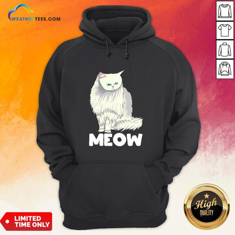 Funny Meow Cat Lady and Cats Kittens People Men Women Gift Hoodie