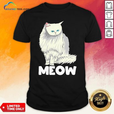 Funny Meow Cat Lady and Cats Kittens People Men Women Gift T-Shirt