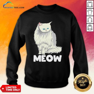 Funny Meow Cat Lady and Cats Kittens People Men Women Gift Sweatshirt
