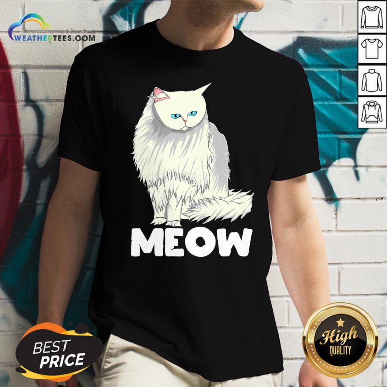 Funny Meow Cat Lady and Cats Kittens People Men Women Gift V-neck