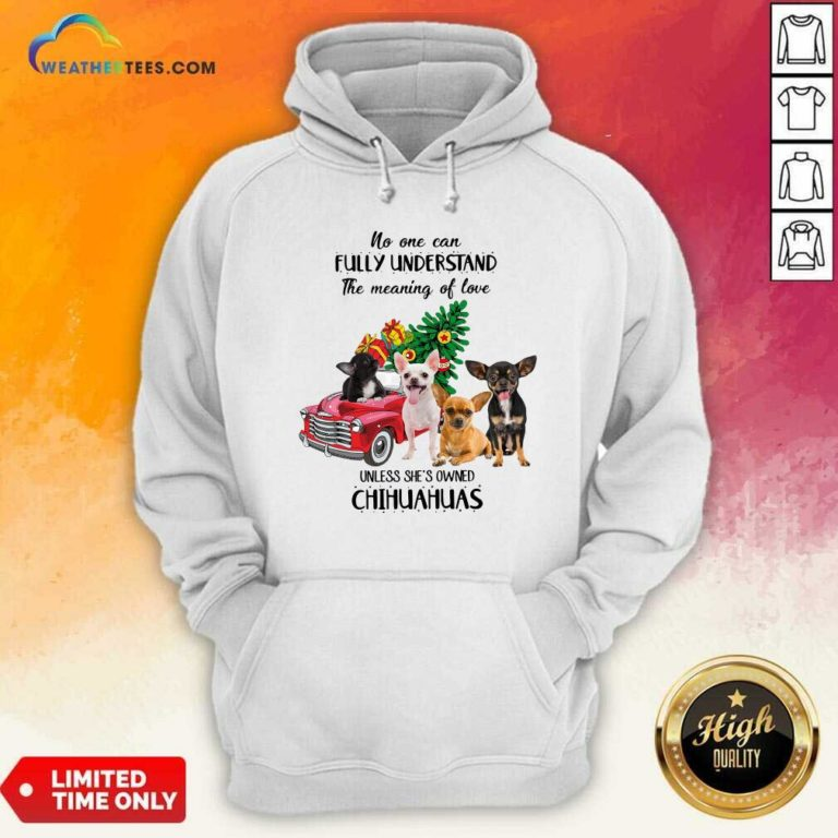 No One Can Fully Understand The Meaning Of Love Chihuahuas Christmas Hoodie - Design By Weathertees.com