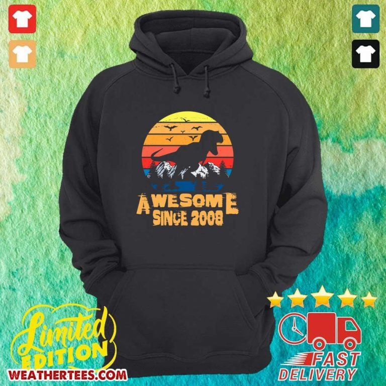 Vintage Awesome Since 2008 13 Year Old 13th Birthday Gift For Dinosaur Boy Hoodie - Design By Weathertees.com