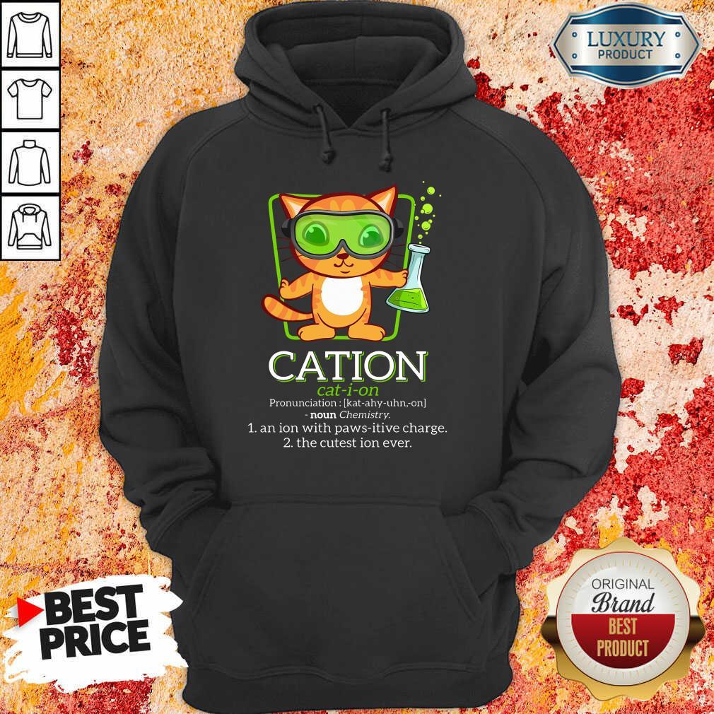 Cat Science Cation Hoodie