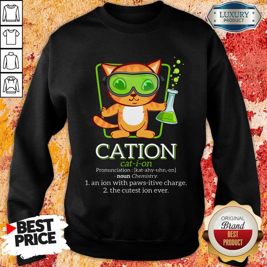 Cat Science Cation Sweatshirt